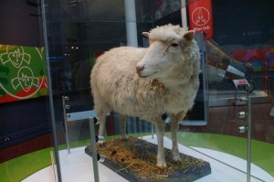 I was so famous I became a taxidermist's project (Credit: Wikipedia/Mike Pennington)